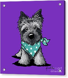 Ash Cairn Terrier In Dots Acrylic Print by Kim Niles