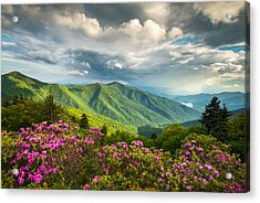 Asheville Nc Blue Ridge Parkway Spring Flowers Acrylic Print by Dave Allen