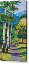 Aspen Trails Acrylic Print by Billie Colson