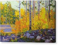 Aspen Vista Acrylic Print by Gary Kim