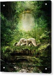 At Sleep Acrylic Print by Mary Hood