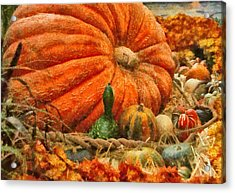 Autumn - Pumpkin - Great Gourds Acrylic Print by Mike Savad