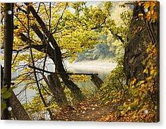 Autumn 9 Acrylic Print by Dominika Aniola