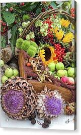 Autumn Abundance Acrylic Print by Tim Gainey