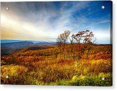 Autumn Afternoon Acrylic Print by Renee Sullivan