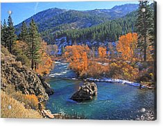 Autumn Along The Truckee River Acrylic Print by Donna Kennedy