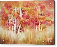 Autumn Blaze Acrylic Print by Deborah Ronglien