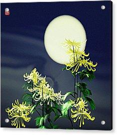 Autumn Chrysanthemums 2 Acrylic Print by GuoJun Pan