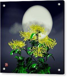 Autumn Chrysanthemums Acrylic Print by GuoJun Pan