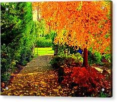 Autumn Colors Acrylic Print by Aron Chervin