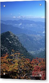 Autumn Colour In The Chilean Lake District Acrylic Print by James Brunker