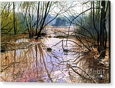 Autumn Creek Acrylic Print by Sergey Zhiboedov