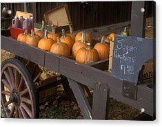 Autumn Farmstand Acrylic Print by John Burk