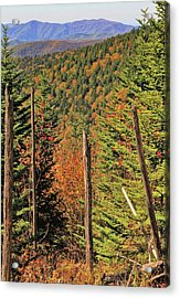 Autumn From The Top Of Clingman's Dome Acrylic Print by Dan Sproul