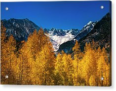 Autumn In Colorado Acrylic Print by Andrew Soundarajan