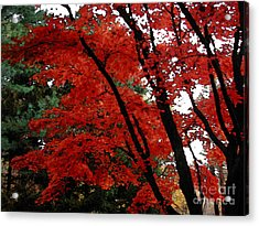 Autumn In New England Acrylic Print by Melissa A Benson