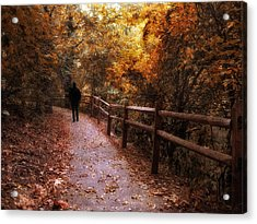 Autumn In Stride Acrylic Print by Jessica Jenney