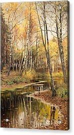 Autumn In The Birchwood Acrylic Print by Mountain Dreams