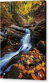 Autumn In The Catskills Acrylic Print by Rick Berk