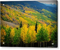 Autumn In The Rockies Acrylic Print by Aaron Burrows