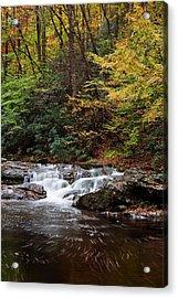 Autumn In The Smokies Acrylic Print by Andrew Soundarajan