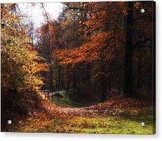 Autumn Landscape Acrylic Print by Artecco Fine Art Photography