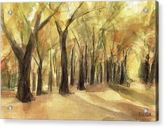 Autumn Leaves Central Park Acrylic Print by Beverly Brown
