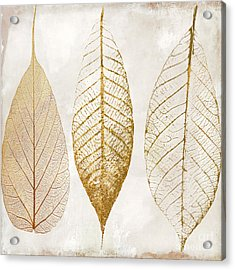 Autumn Leaves IIi Fallen Gold Acrylic Print by Mindy Sommers