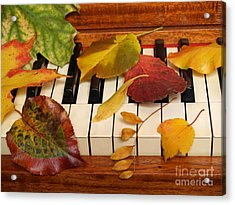 Autumn Leaves Tickle The Ivories Acrylic Print by Anna Lisa Yoder