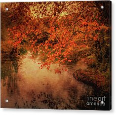 Autumn On The River Sorgue Acrylic Print by Robert Brown