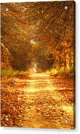 Autumn Paradisium Acrylic Print by Georgiana Romanovna