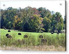 Autumn Pastures Acrylic Print by Jan Amiss Photography