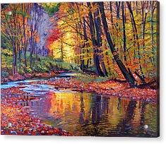 Autumn Prelude Acrylic Print by David Lloyd Glover
