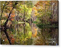 Autumn Reflection On Florida River Acrylic Print by Carol Groenen