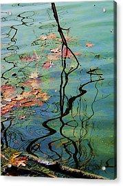 Autumn Ripples 9 Acrylic Print by Todd Sherlock