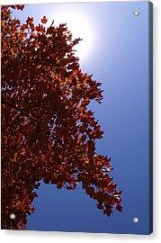 Autumn Sky I Acrylic Print by Anna Villarreal Garbis