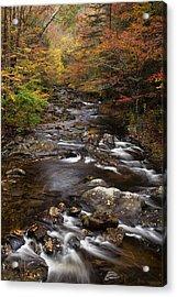 Autumn Stream Acrylic Print by Andrew Soundarajan