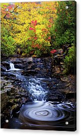 Autumn Swirls Acrylic Print by Chad Dutson