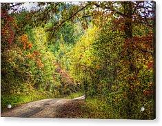 Autumn Tour Acrylic Print by Debra and Dave Vanderlaan