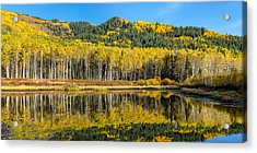 Autumn Trees Reflecting On Willow Lake In Utah Acrylic Print by James Udall