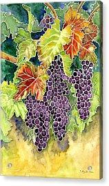 Autumn Vineyard In Its Glory - Batik Style Acrylic Print by Audrey Jeanne Roberts