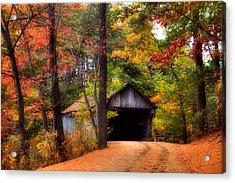 Autumn Wonder Acrylic Print by Joann Vitali