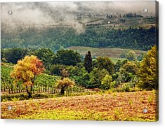 Autumnal Hills Acrylic Print by Silvia Ganora