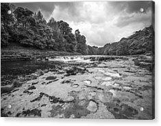 Aysgarth Falls Acrylic Print by Stewart Scott