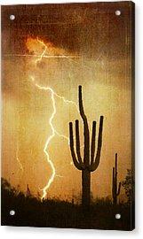 Az Saguaro Lightning Storm V Acrylic Print by James BO  Insogna
