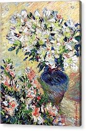 Azaleas Acrylic Print by Claude Monet