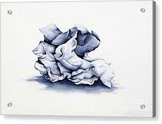 Back To Basics Acrylic Print by Christina Meeusen
