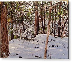 Back Yard Snow Acrylic Print by Sharon  De Vore