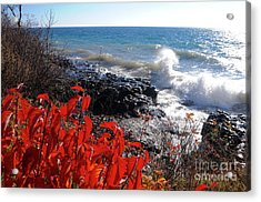 Backwash Acrylic Print by Sandra Updyke