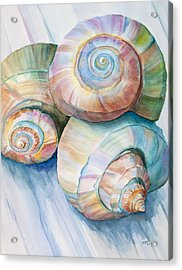 Balance In Spirals Watercolor Painting Acrylic Print by Michelle Wiarda
